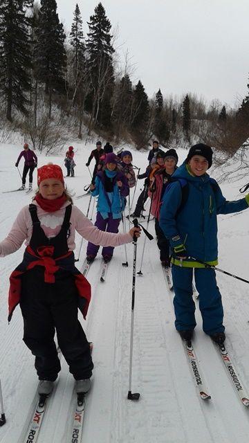 Une belle randonnée de ski de fond en forêt.